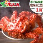 Hanasaki Crab - 北海道産 花咲ガニ 1.0kg×1尾(オス/ボイル冷凍) 根室 花咲蟹 カニ 蟹 ギフト 贈り物 贈答 自宅用 北海道 グルメ お取り寄せ