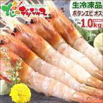 ボタンエビ 1kg (BL/オス/21-23尾入り/生冷凍) エビ ボタン海老 ギフト 贈り物 贈答 訳あり じゃありません 北海道 食品 グルメ お取り寄せ