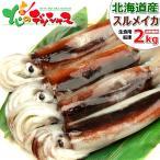 北海道産 スルメイカ(生冷凍/約2kg) いか イカ 生食・刺身・塩辛用 2017 海鮮 水産 ギフト 贈り物 北海道 グルメ お取り寄せ