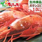 【決算セール】ボタンエビ 食べ比べ 1kg (オス500g・メス500g/生冷凍) エビ ボタン海老 北海道 ギフト 贈り物 贈答 北海道 高級 グルメ お取り寄せ