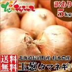 玉ねぎ 北海道 札幌黄 訳あり 5kg(今ならおまけ500g付き) 玉葱 黄玉葱 秋野菜 お取り寄せ グルメ
