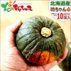 かぼちゃ 坊ちゃんかぼちゃ 10玉入り(1玉 300g) 北海道産 カボチャ 南瓜 秋野菜 野菜 ギフト 自宅用 グルメ 送料無料 ハロウィン お取り寄せ