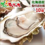 牡蠣 北海道産 殻付き 活 カキ 10個セット 殻付 生カキ 生牡蠣 生食用 北海道 残暑見舞い お歳暮 ギフト 北海道 高級 グルメ お取り寄せ
