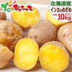 【予約】北海道産 新じゃが じゃがいも ご家庭用 ひと口 インカのめざめ 10kg 馬鈴薯 ジャガイモ 越冬 野菜 人気 北海道 食品 グルメ お取り寄せ