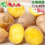 【予約】北海道産 新じゃが じゃがいも ご家庭用 ひと口 インカのめざめ 5kg 馬鈴薯 ジャガイモ 越冬 野菜 人気 北海道 食品 グルメ お取り寄せ