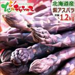 芦笋 - パープルアスパラ 北海道産 1.2kg 極太L-2L サイズ混合 パープルアスパラガス 紫アスパラガス お取り寄せ