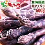 蘆筍 - パープルアスパラ 北海道産 600g 極太L-2L サイズ混合 パープルアスパラガス 紫アスパラガス お取り寄せ