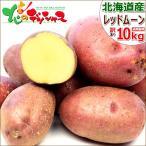 【出荷開始】北海道産 新じゃが じゃがいも ご家庭用 レッドムーン 10kg 馬鈴薯 ジャガイモ 越冬 野菜 ギフト 自宅用 人気 北海道 食品 グルメ お取り寄せ