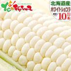 【予約】北海道産 朝採り とうもろこし ホワイトショコラ 朝採り 10本入り 人気 生 甘い 美味しい スイートコーン 北海道 ギフト グルメ お取り寄せ