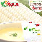 【予約】とうもろこし ピュアホワイト&スープセット(ピュアホワイト8本+スープ2箱) 南幌町明るい農村ネットワーク お取り寄せ