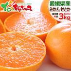 【予約】愛媛県産 みかん せとか 3kg (共選 秀品/7〜15玉入り) 蜜柑 柑橘類 ミカン 蜜柑 ギフト 贈り物 贈答用 訳あり じゃない お取り寄せ