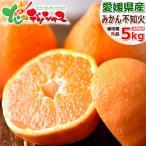【予約】愛媛県産 みかん 不知火(しらぬひ) 5kg(共選 秀品/16〜24玉入り) 蜜柑 柑橘類 ミカン 蜜柑 ギフト 贈り物 贈答用 お取り寄せ