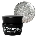 Trump (トランプジェル) ジェルネイル カラージェル 3g R801 スパークリングシフォン 【取寄3〜5日】【ネコポス対応】