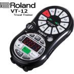 Roland VT-12 Vocal Trainer ローランド ボーカルトレ