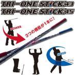 ロイヤルコレクション TRI ONE STICK トライワンスティック 43/45 スイング練習器 2014モデル