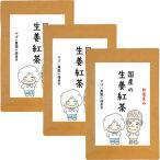 生姜紅茶 3g×40包 (お得な3個セット)