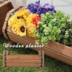送料無料 鉢植え 鉢花 おしゃれ 屋外 室内 はな ぷらんたー