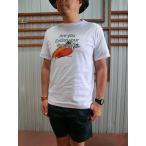 ワイルドシングス WILD THINGS WILD THINGSワイルドシングス COOLMAX PRINT TEE 速乾Tシャツ Whale Tomato Carrot