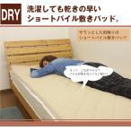 ちょっと訳あり スーパーショートパイル敷きパッド ベッドパッド シングル(100×205cm) 敷きパッド 敷きパット ベットパット タオル敷きパッド 綿敷きパッド