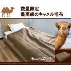 ショッピングキャメル 数量限定 キャメル100%毛布ブランケット 日本製 シングル 140×200cm キャメル毛布 高級品 らくだ ウール毛布 純毛毛布