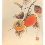 中谷文魚 『富有柿』 色紙絵   絵画 日本画 秋の色紙 果物 メール便 ネコポス
