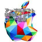 iTunes Card 5000ポイント