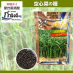 ショッピング夏 空芯菜(パクブン・アサガオナ・エンサイ)種