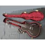 【送料無料】Taylor(テイラー) エレクトリック・ホロウボディーギター T5z Pro GAL