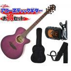 ARIA(アリア) アコースティックギター/お気軽4点セット「TG-1 SPP:シースルーパープル+小物3点」【レビューでハーモニカをもらおう♪】