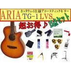 ARIA(アリア) アコースティックギター「TG-1 LVS:ライトヴィンテージサンバースト15点セット」【レビューでハーモニカをもらおう♪】