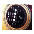 【送料無料】Moiss Guitar Care(モイスギターケア)MOISS2-GC1/アコースティックギター用湿度調整器