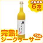 ショッピング沖縄 完熟シークワーサージュース 500ml×6本(送料無料)