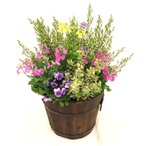 仕入れたばかりの花々をコンテナいっぱいに寄せ植え!
