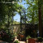 ガーデンアーチ バラ/ パサディナガーデン アーチ  A-1093 /ローズ/つる/クレマチス/アイアン/アンティーク/大型商品のため日時指定不可