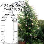 ガーデンアーチ バラ/ G-story クライミングアーチ ローズキャッスル GSTR-RC10 /ローズ/つる/クレマチス/アイアン