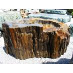 つくばい 手水鉢 水鉢 木化石 珪化木 庭石 景石 蹲