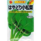 アタリヤ コマツナ はやどり小松菜【6ml】 野菜種 葉菜 こまつな