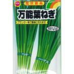 アタリヤ 万能葉ねぎ【10ml】 野菜種 葉菜 ネギ