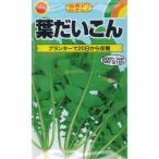 アタリヤ 四季どり 葉だいこん【18ml】 野菜種 根菜 ダイコン
