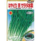 アタリヤ はやどり京サラダ水菜【10ml】 野菜種 葉菜 ミズナ