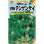 アタリヤ 30日ミニチンゲン菜【3ml】 野菜種 葉菜 ちんげんさい
