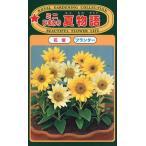 【種子】ミニひまわり 夏物語 トーホクのタネ