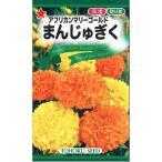 【種子】アフリカンマリーゴールド まんじゅぎく トーホクのタネ