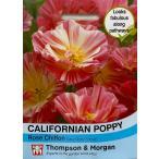 【輸入種子】 Thompson & Morgan Californian Poppy Rose Chiffon カリフォルニアポピー(エスコルシア) ローズ・シフォン トンプソン&モーガン