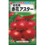 【種子】切花用 赤花アスター トーホクのタネ