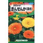 【種子】かわいいきんせんか(混合) トーホクのタネ