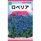 【種子】ロベリア トーホクのタネ