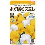 【種子】よく咲くスミレ ビタミン・ラテ サカタのタネ