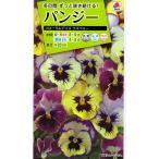 【種子】パンジー フローラルデイズ ラズベリー タキイのタネ
