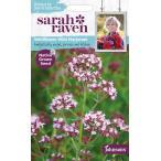 【種子】よく咲くスミレ ソーダ・ラテ サカタのタネ